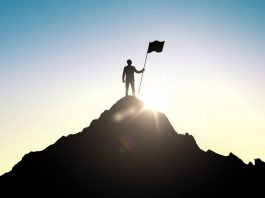 Succes factors in Digital Transformations